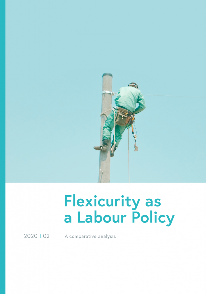 Flexicurity as a Labour Policy
